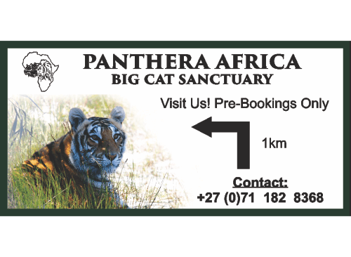 capricomm-portfolio-panthera-africa