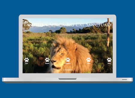 Panthera Africa Web Design